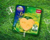 Hochland-branza-gruenlaender